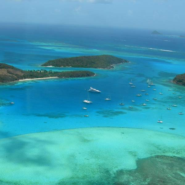 Dive into the Tobago Cays