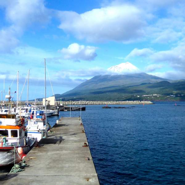 Discover Lajes Harbour and Mount Pico