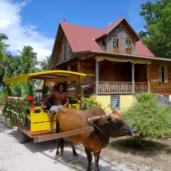 Ox cart in La Digue