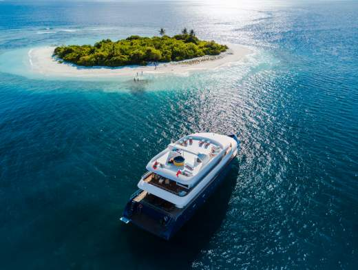 Diving Cruise in the Maldives
